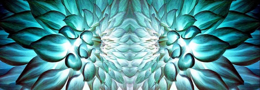 Dahlia Photograph - Dahlia Flower Art by Sumit Mehndiratta