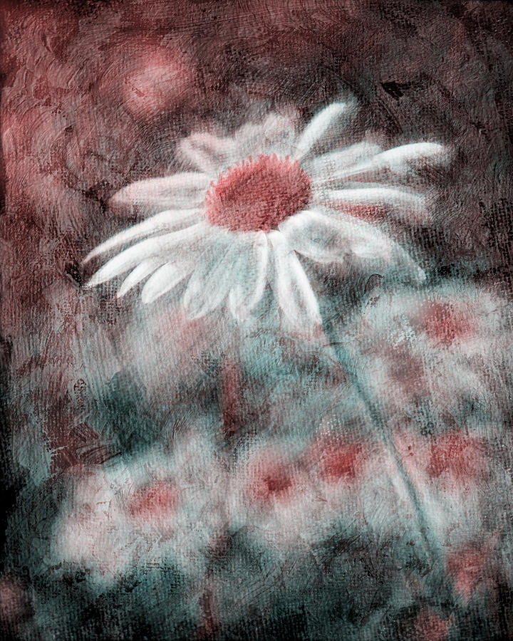 Daisies Photograph - Daisies ... Again - P11ac2t1 by Variance Collections
