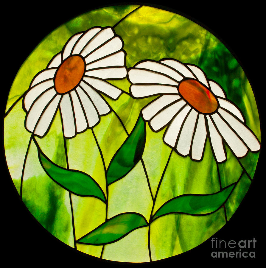 Daisies Stained Glass Panel Glass Art - Daisies by David Kennedy