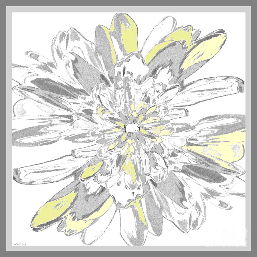 Floral Digital Art - Daisies Three by Carina Kivisto