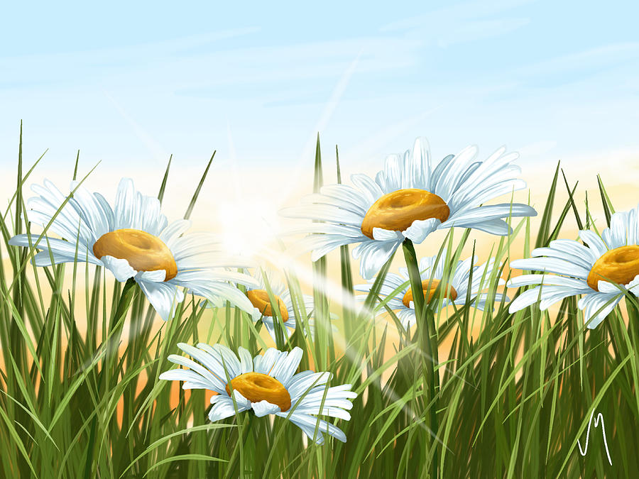 Flowers Painting - Daisies by Veronica Minozzi