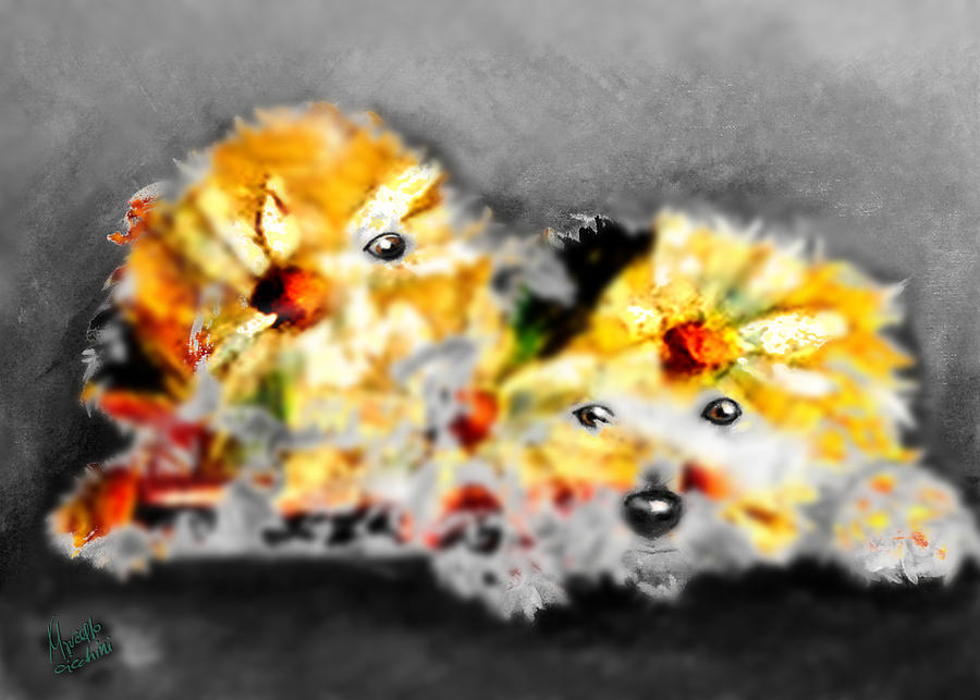 Bichon Painting - Daisy Animal by Marcello Cicchini