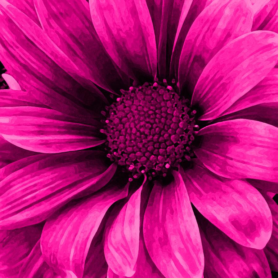 Daisy Daisy Neon Pink Mixed Media