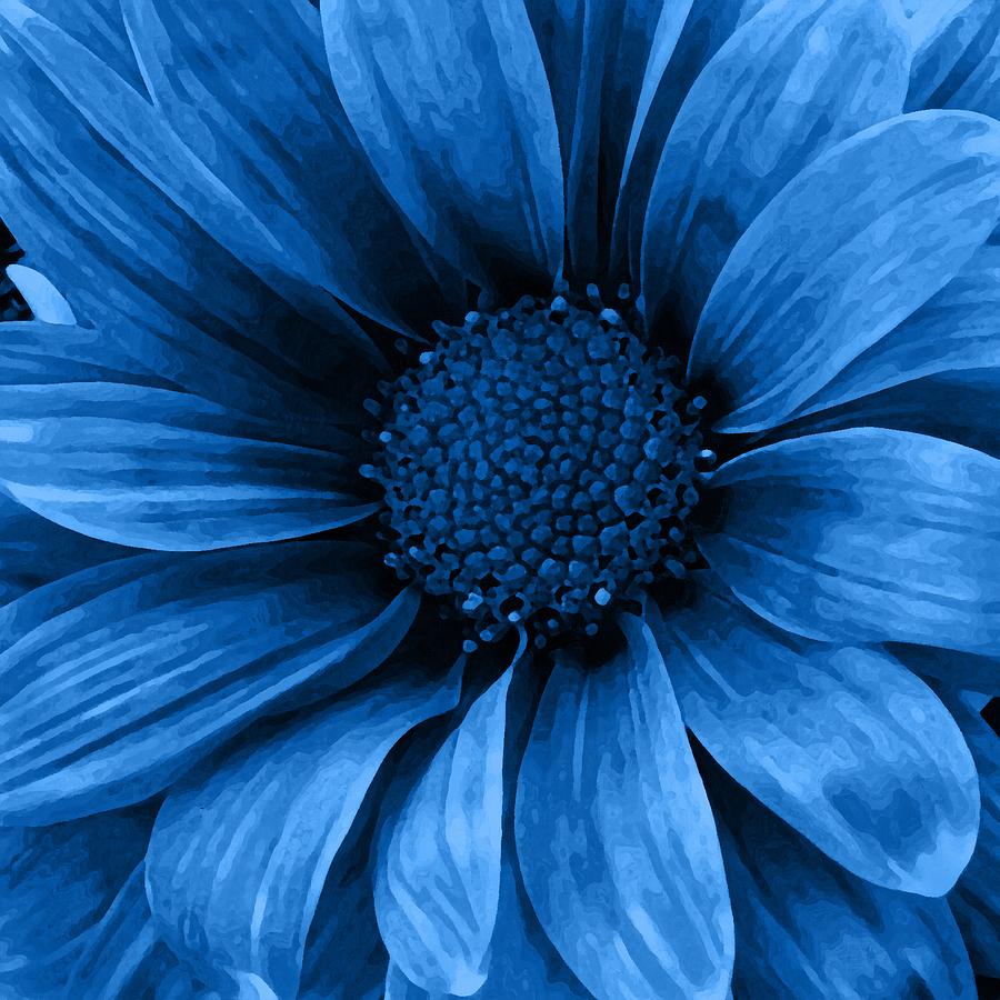 Daisy Daisy Pure Blue Mixed Media by Angelina Vick