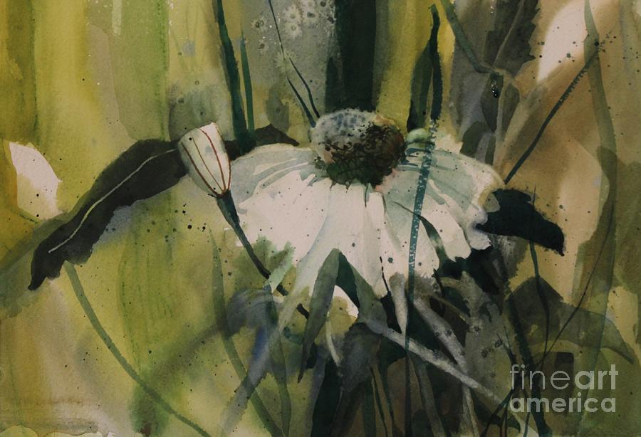 Daisy Painting - Daisy by Elizabeth Carr