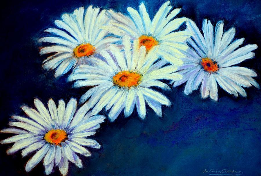 Daisy Pastel - Daisy Fever  Pastel by Antonia Citrino