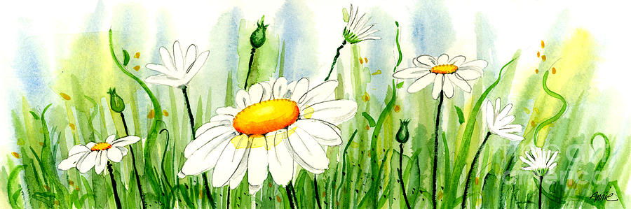 Watercolor Painting - Daisy Field by Annie Troe