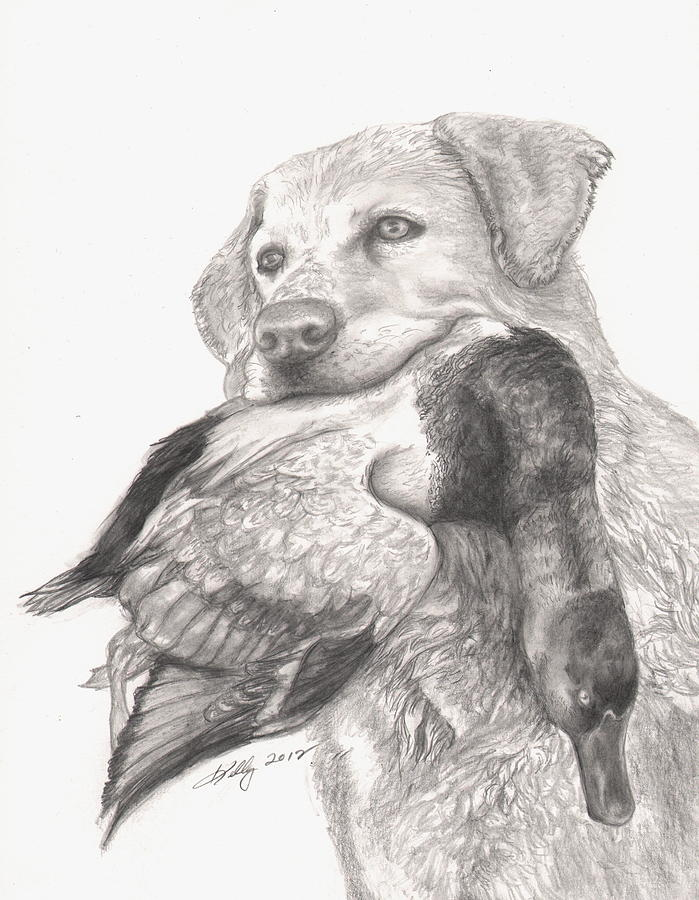 Animals Drawing - Daisy by Kathleen Kelly Thompson