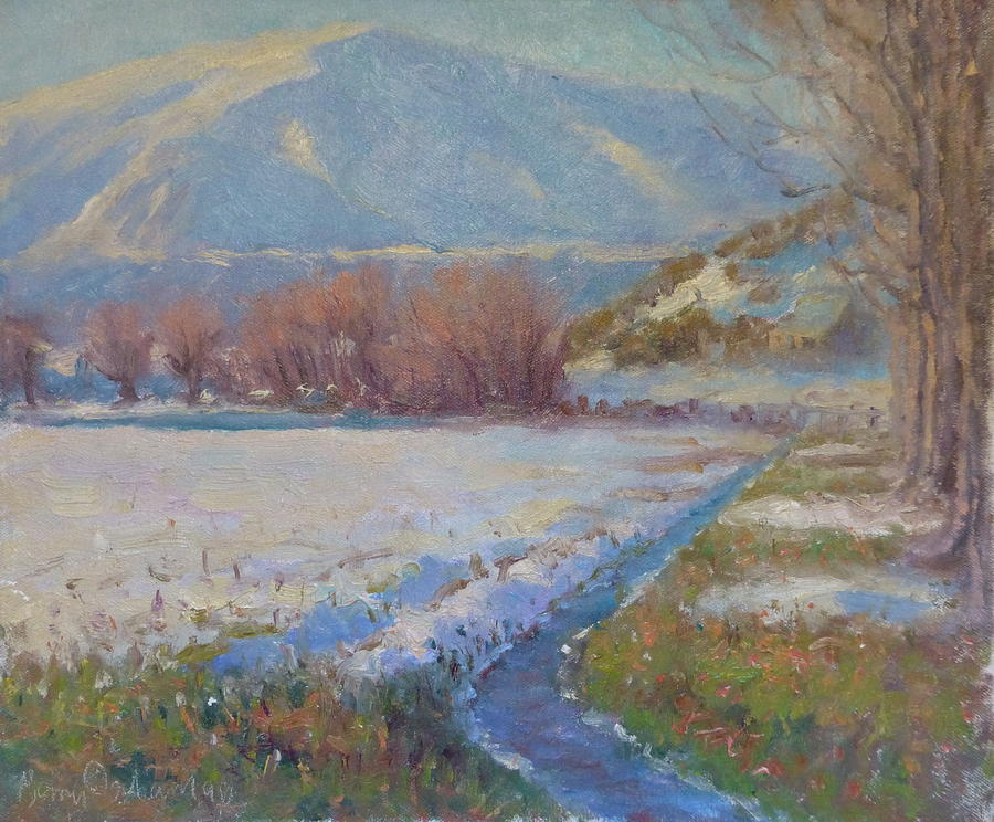 Landscape Painting - Dalefield. Queenstown Nz. by Terry Perham
