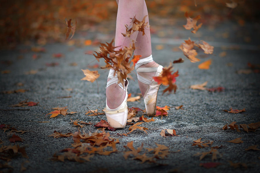 Dance Photograph - Dance In The Fall Wind by Rob Li