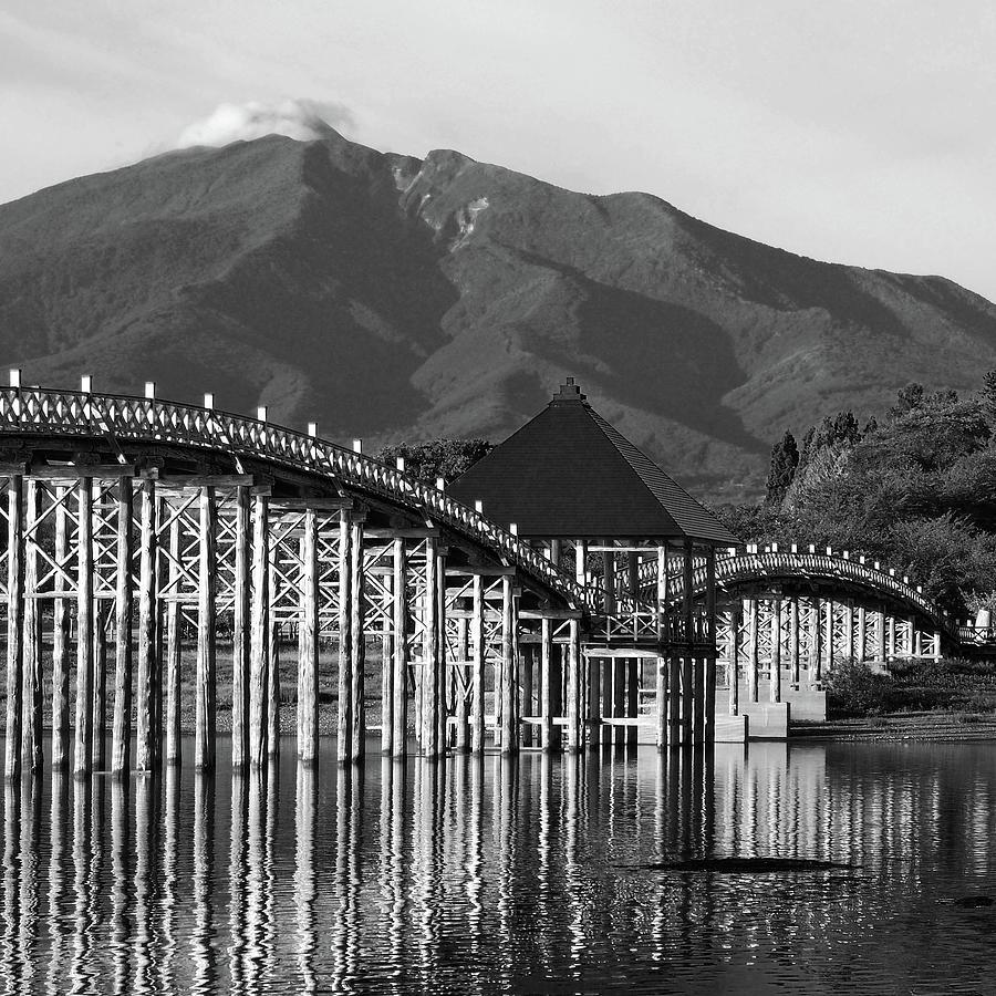 Dance Of Crane Hokusai Bridge Photograph by Marco Ferrarin
