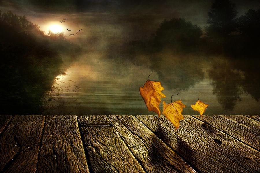Art Photograph - Dance To The Sun by Veikko Suikkanen