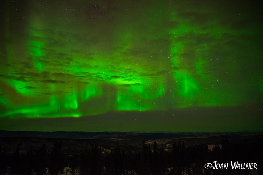 Alaska Photograph - Dancing Auroras by Joan Wallner
