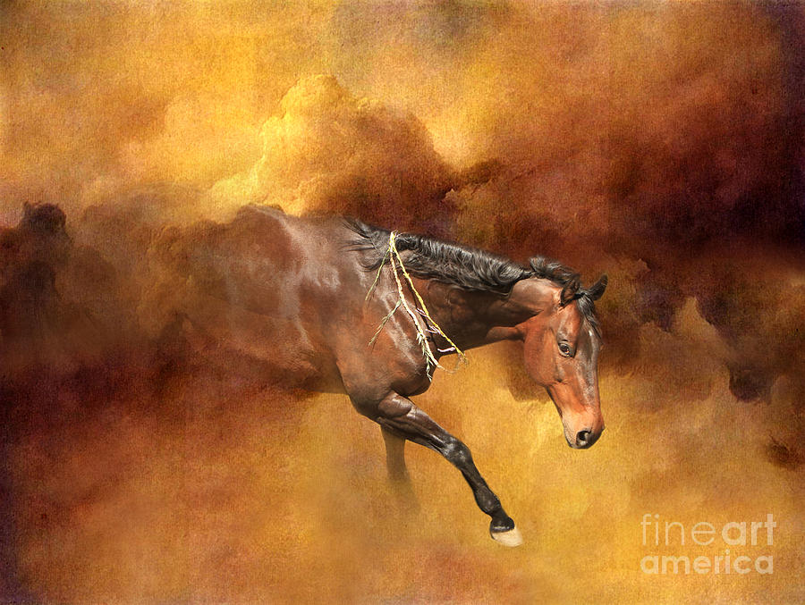 Dancing Free II by Michelle Twohig