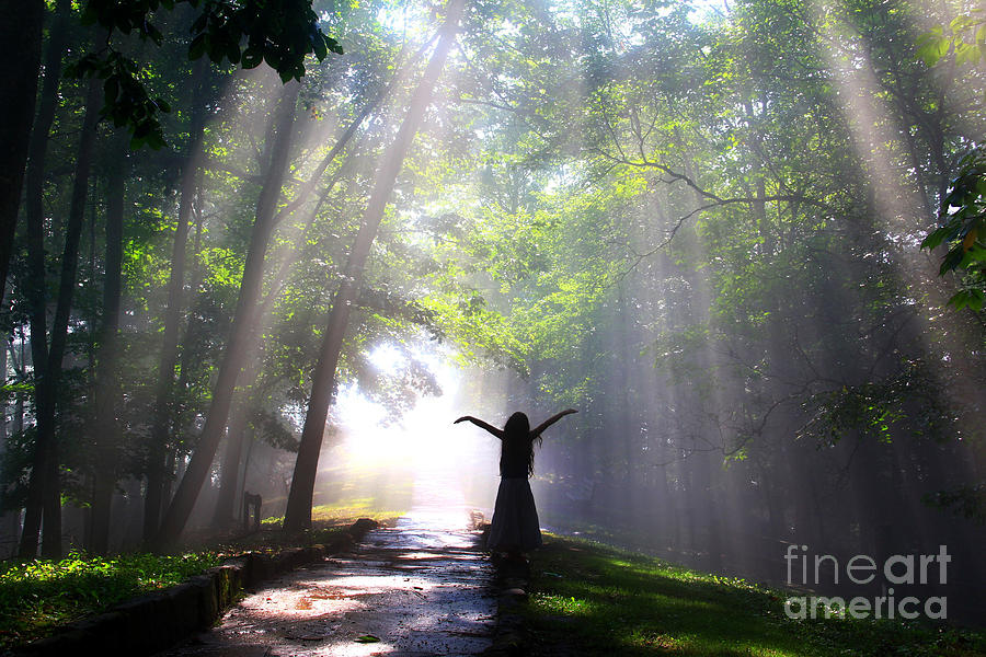 Sunrise Photograph - Dancing In Gods Light Copyright Willadawn Photography by Melissa Petrey