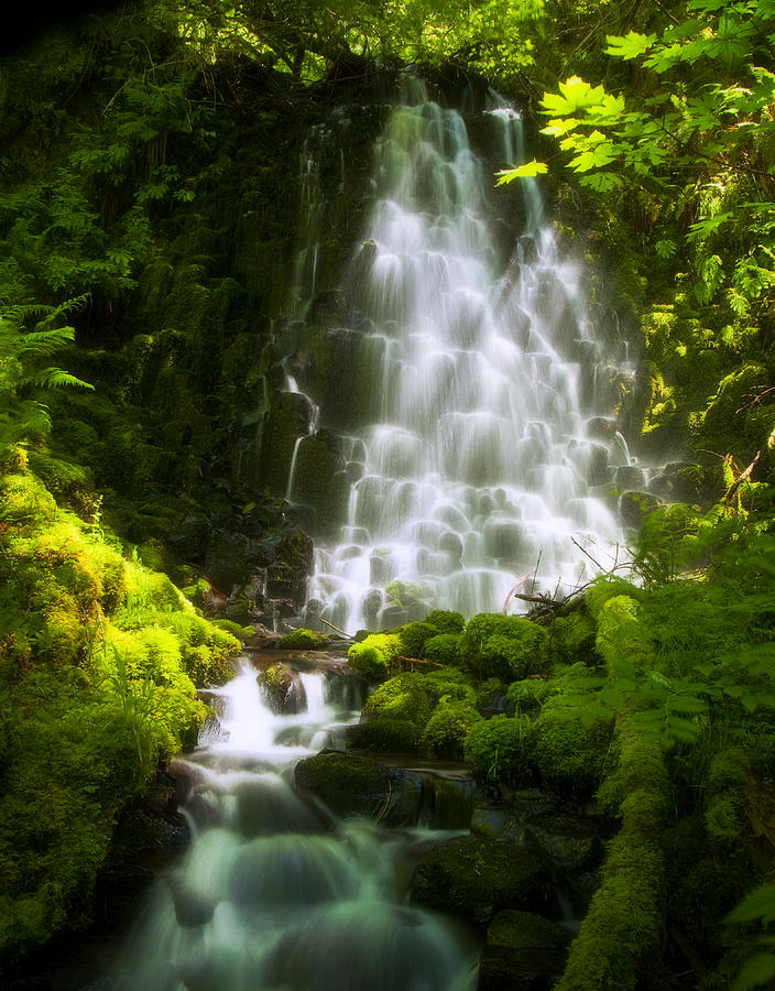 Waterfall Photograph - Dancing In The Sunlight by Jon Ares