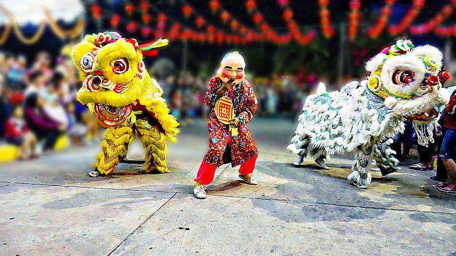 Dancing Lions Photograph