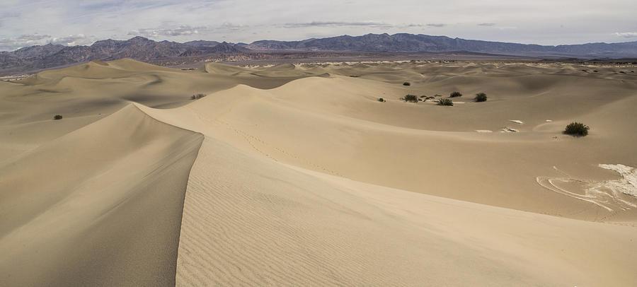 Dunes Photograph - Dancing Sands by Brad Scott