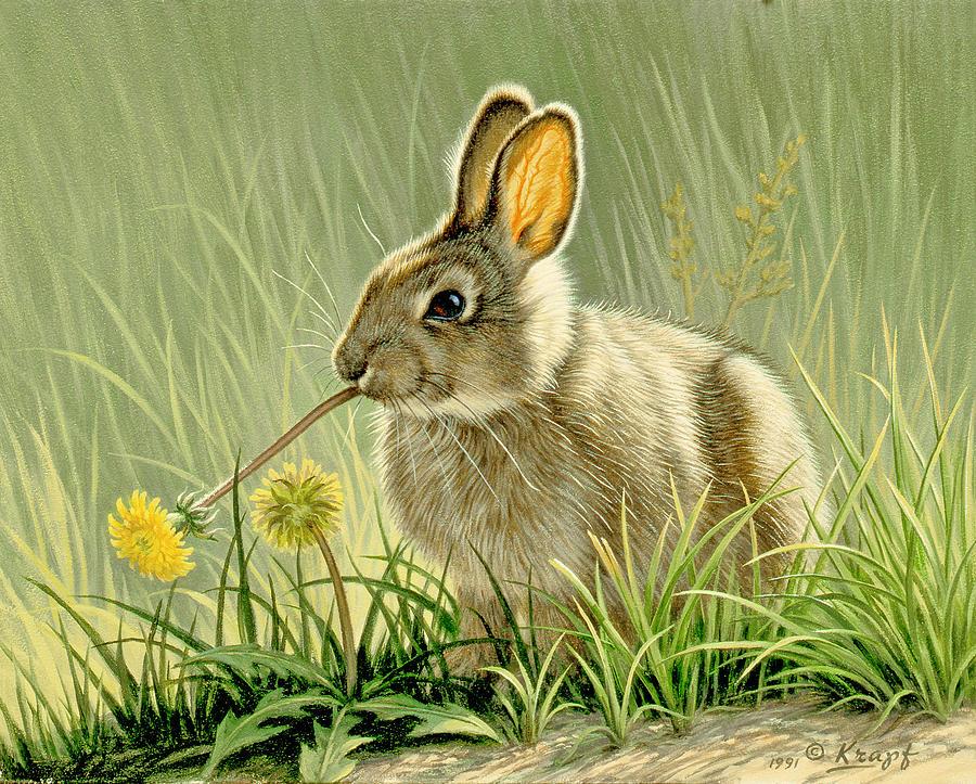 Wildlife Painting - Dandi-nibbler by Paul Krapf