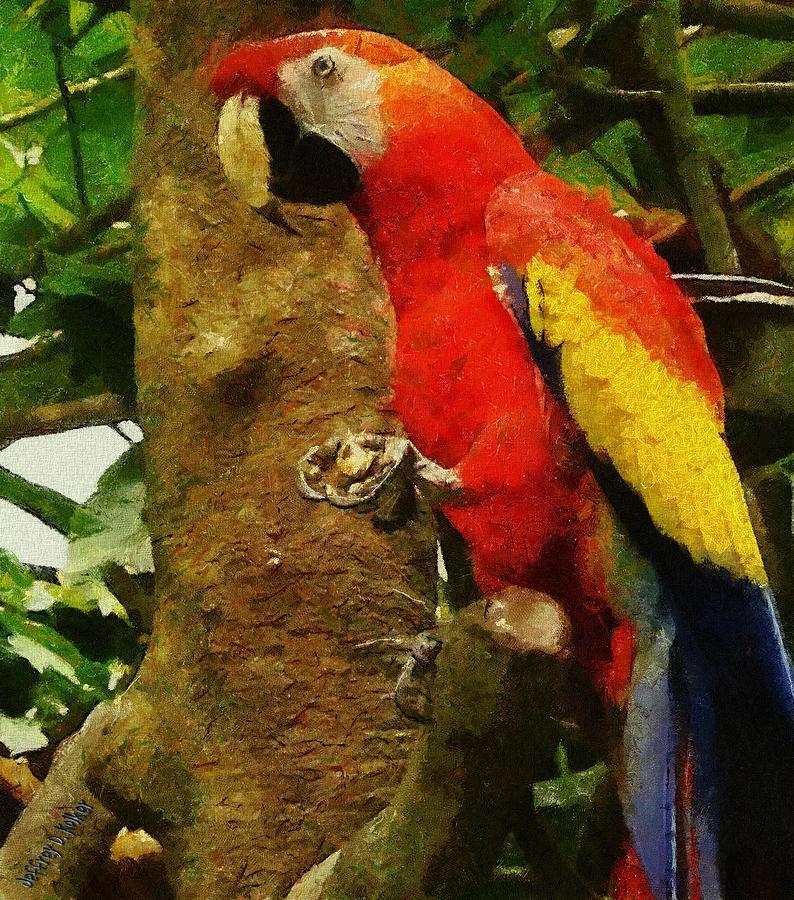America Painting - Danse Macaw by Jeffrey Kolker