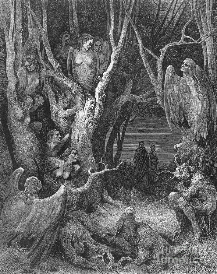Dante S Inferno Suicides And The Harpies
