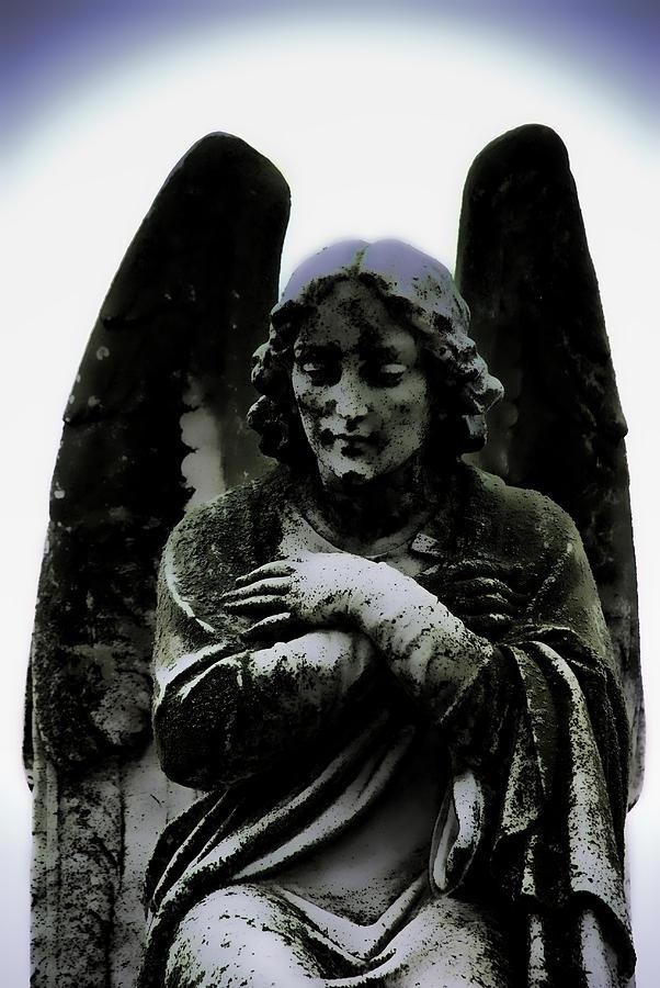 Dark Angel Photograph