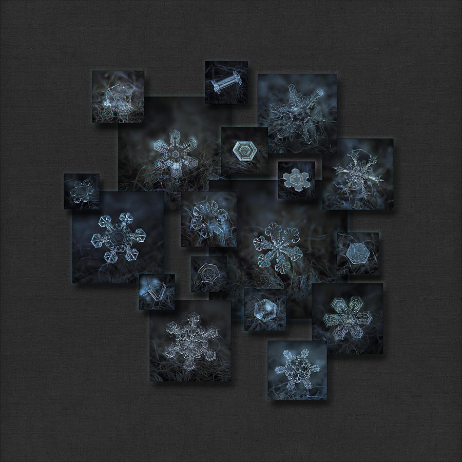 Snowflake Photograph - Snowflake Collage - Dark Crystals 2012-2014 by Alexey Kljatov