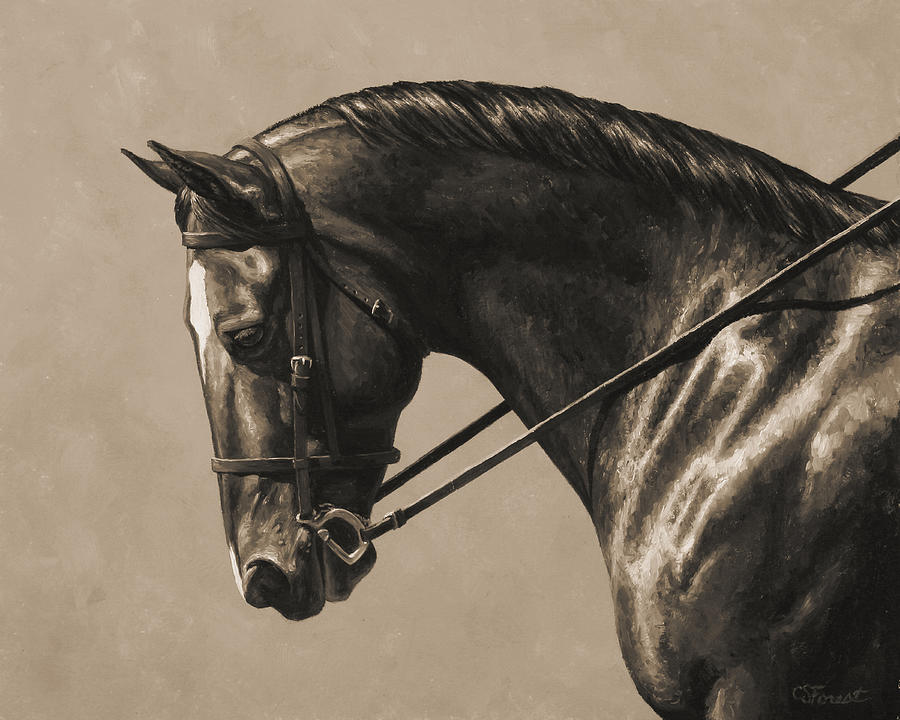 Horse Painting - Dark Dressage Horse Aged Photo Fx by Crista Forest