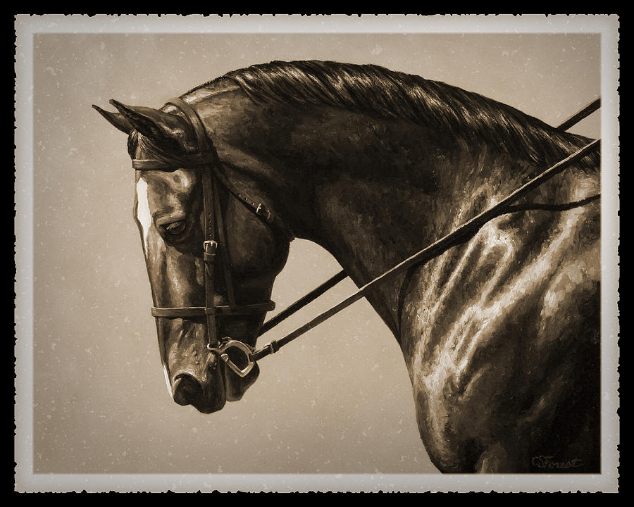 Horse Painting - Dark Dressage Horse Old Photo FX by Crista Forest