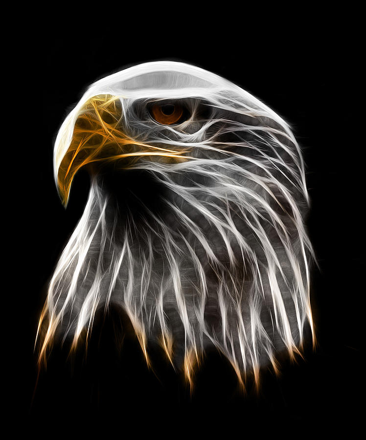 Dark Eagle Digital Art by - BaluX