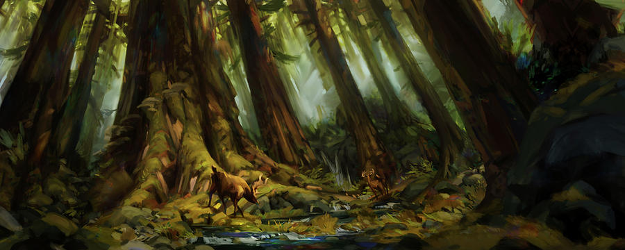 dark-forest-special-edition-brennan-mass