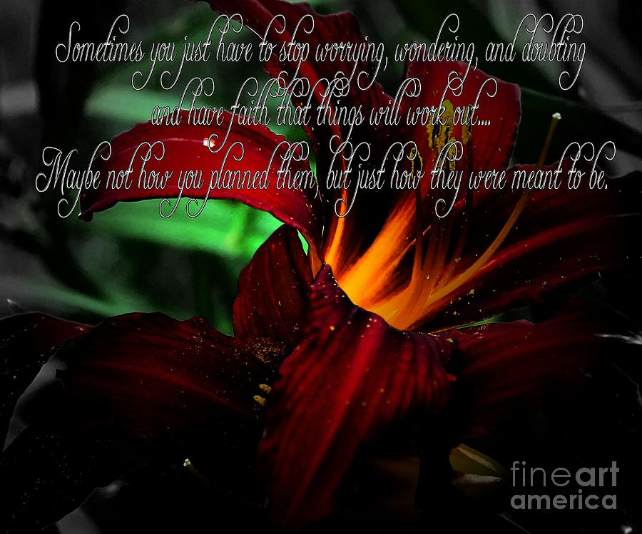 Barbara Griffin Photograph - Dark Red Day Lily And Quote by Barbara Griffin