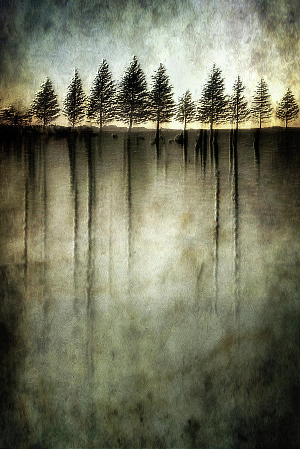 Abstract Photograph - Dark Water Stands Over Me by Charlaine Gerber