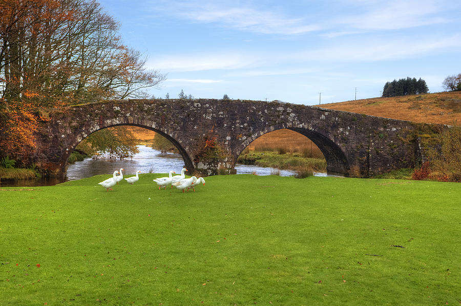 Two Bridges Photograph - Dartmoor - Two Bridges by Joana Kruse
