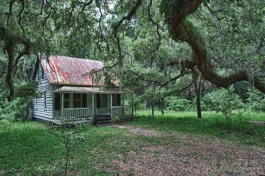 Landscape Photograph - Daufuskie Homestead by Renee Sullivan