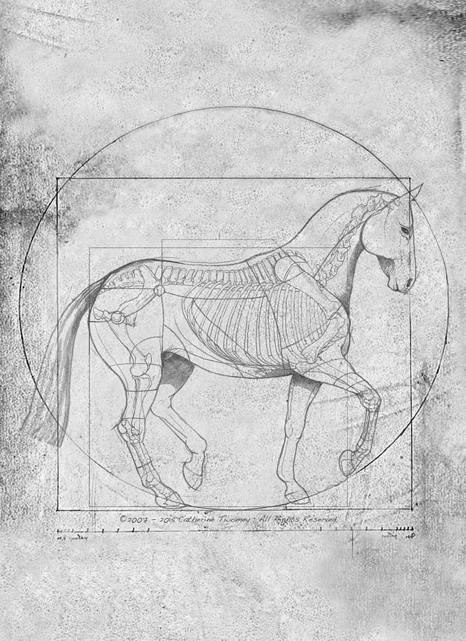 Da Vinci Horse Piaffe Grayscale Painting