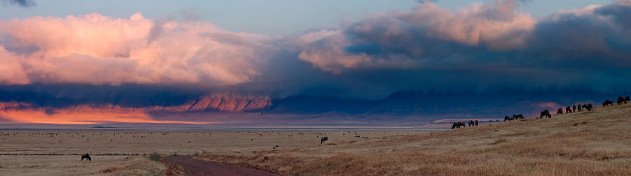 3scape Photograph - Dawn In Ngorongoro Crater by Adam Romanowicz