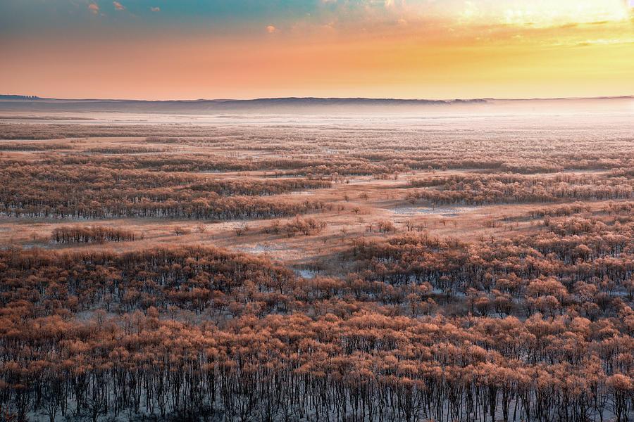 Marsh Photograph - Dawn by Susumu Nihashi