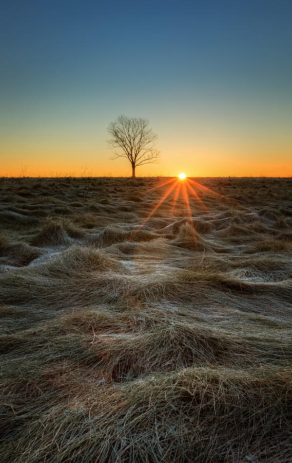 Sunrise Photograph - Daybreak by Bill Wakeley