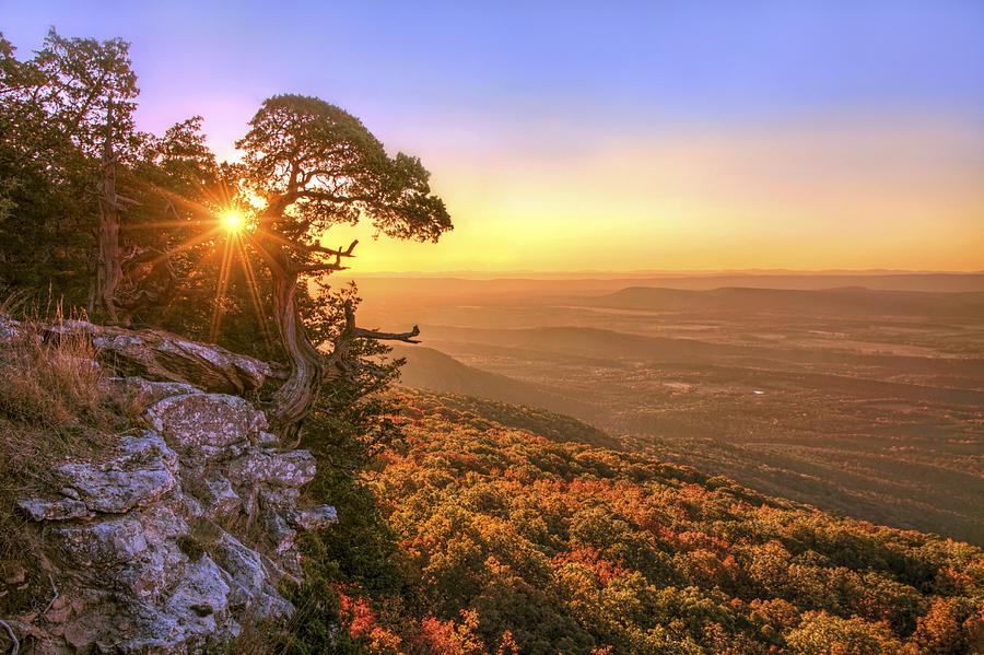 Arkansas Photograph   Daybreak On Mt. Magazine   Arkansas   Cedar Tree    Autumn By