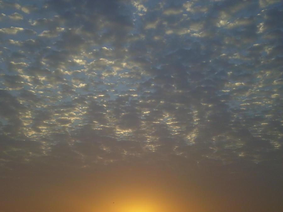 Sunrise Photograph - Daylight Awakening by Heather Jack