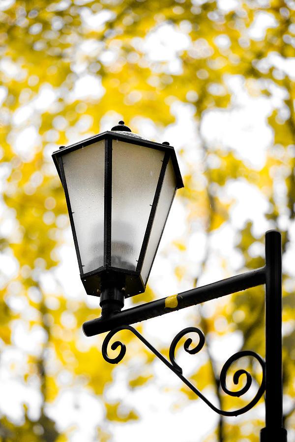 Abstract Photograph - Daylight - Featured 3 by Alexander Senin