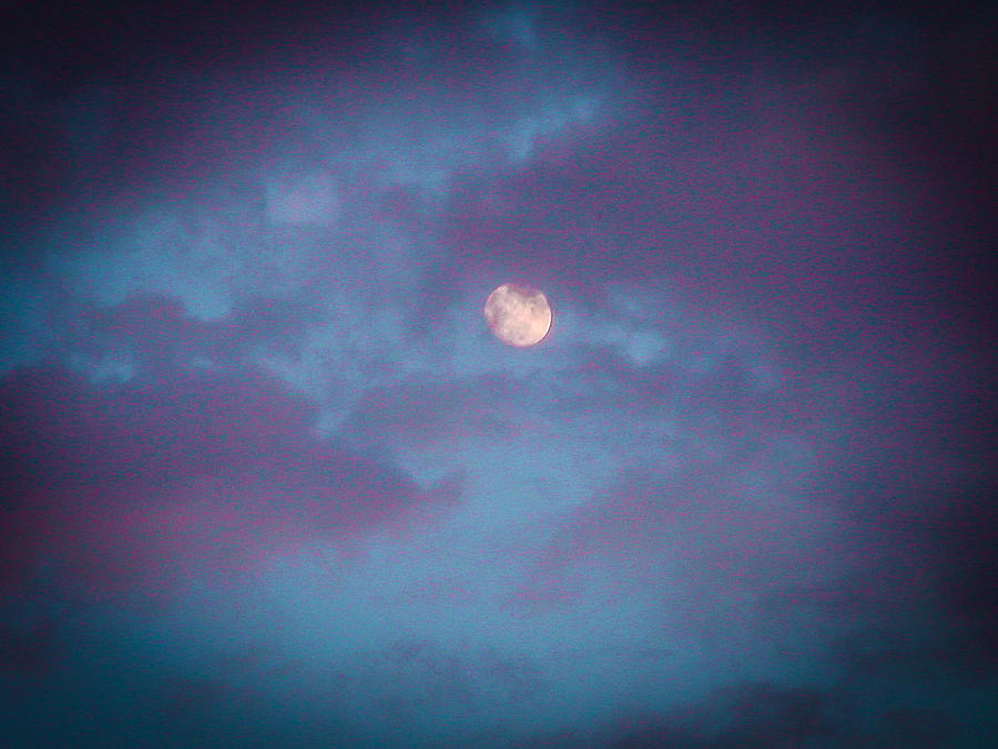 Sky Photograph - Daylight Moon by Robert J Andler