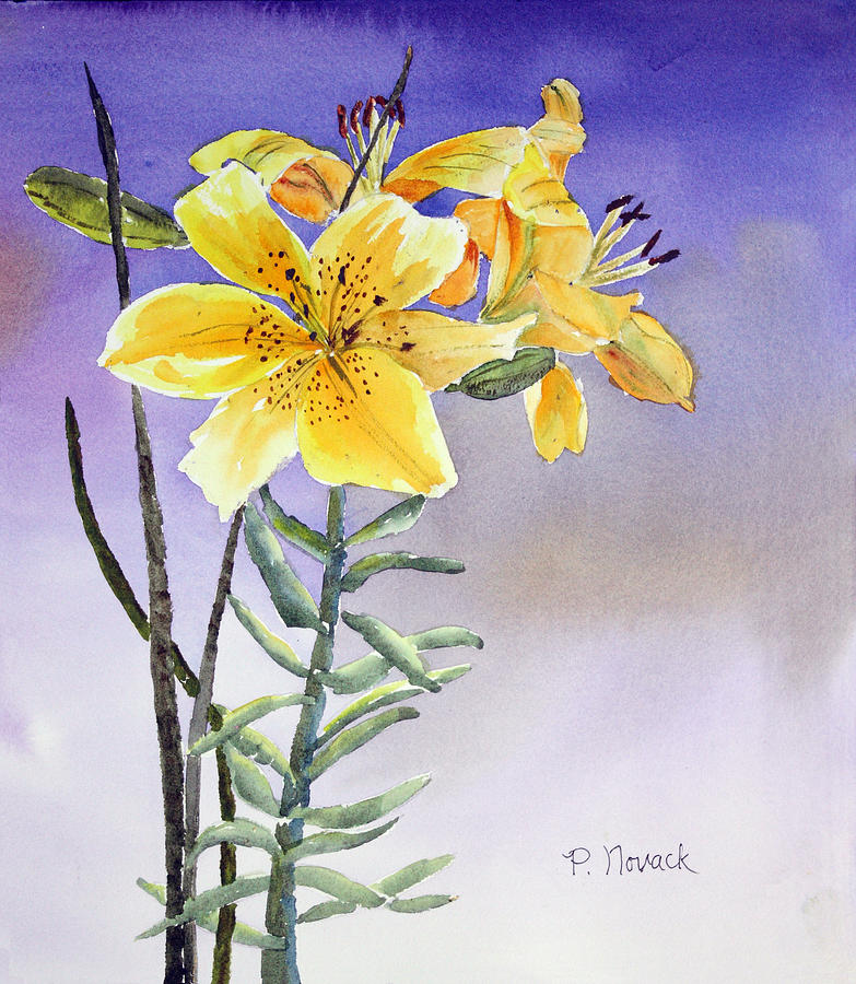 Lily Painting - Daylilies by Patricia Novack