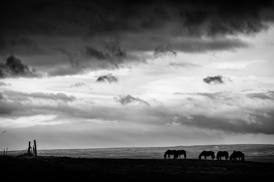 Hvammstangi Photograph - Days End At Hvammstangi by Dave Bowman