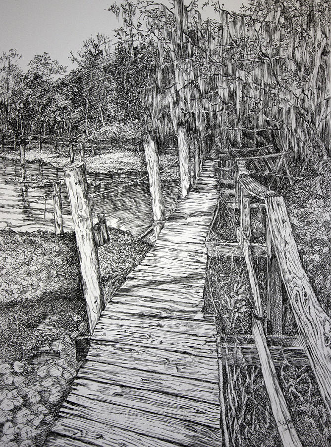 Florida Landscape Drawing - Days Gone By by Janet Felts