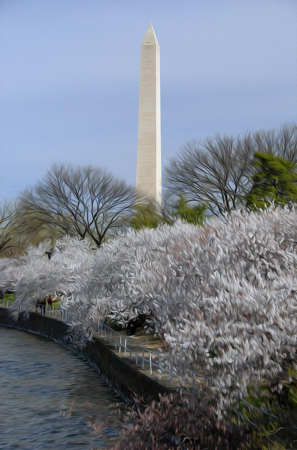 Cherry Blossoms Digital Art - Dc Blossoms by Kelvin Booker