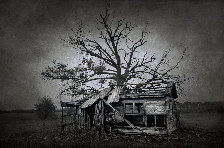 Abandoned Photograph - Dead Place by Svetlana Sewell