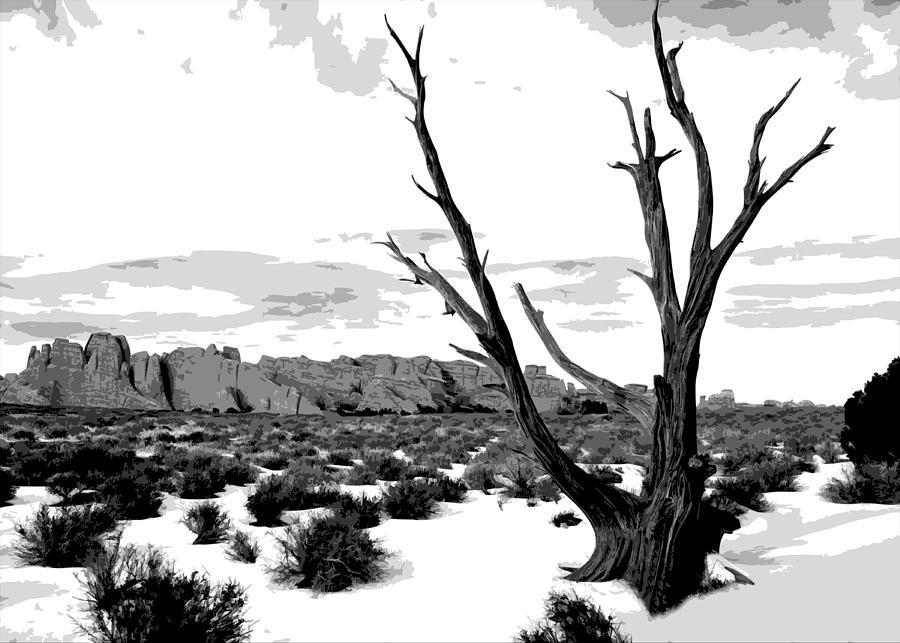 Winter Photograph - Dead Tree In Winter by Jack McAward