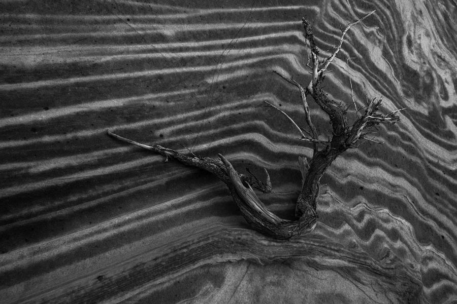 Wave Photograph - Dead Wave by Mike Herdering